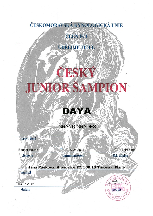 Daya Junior šampion