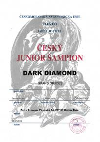 Dark Diamond Junior šampion